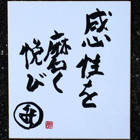 2011年08月31日:SAORI織り城みさを写真